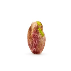 34-pistache-decort-antep-demi-sel-02-2RR